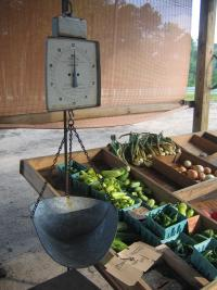 Vegetable Scale